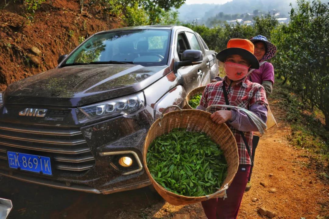 域虎兄弟穿越云南热带雨林 探寻不一样的皮卡生活